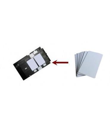 CARD PVC LUCIOS PRINTABIL