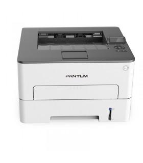 PANTUM P3010DW